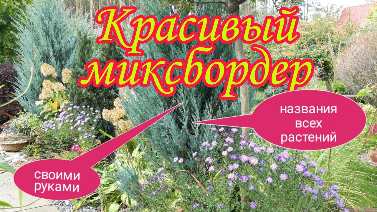 Красивый миксбордер  своими руками. Цветник непрерывного цветения.Ландшафтный дизайн своими руками.