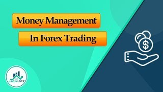 Money Management: The Spell of Forex Trading! And How Does It Works?