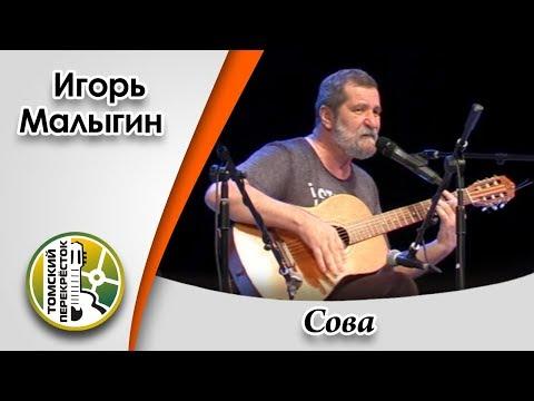 """""""Сова""""- Игорь Малыгин"""