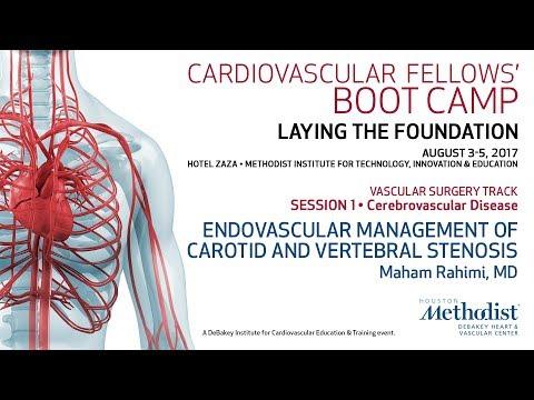 Endovascular Management Of Carotid And Vertebral Stenosis (Maham Rahimi, MD)