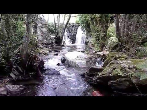Quintela de Lampaças -  Rio Azibo - Açudes do Areal e do Covo