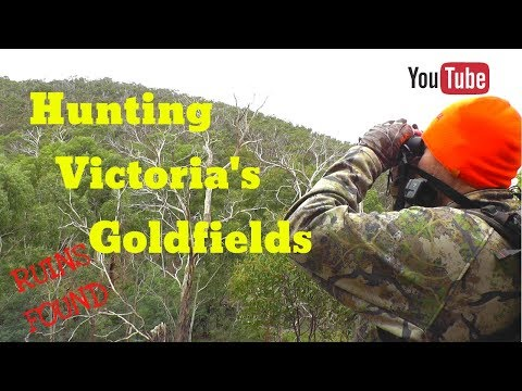 Hunting Victoria's Goldfields