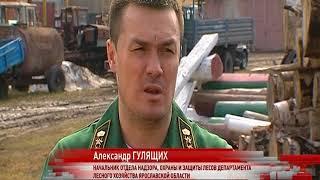 Ярославская область готова к пожароопасному периоду на сто процентов