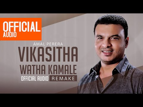 Vikasitha Watha Kamale(Remake) Official Audio - Amal Perera