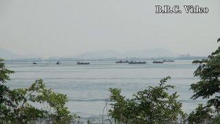 2015年5月27日に琵琶湖南湖下阪本沖で行われた藻刈りの様子です 4月から...
