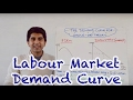 Labour Demand Curve (Market and Firm)
