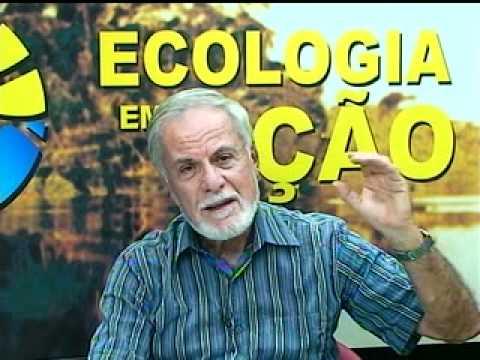 Gestão Ambiental Na Construção Civil Parte 1 - Ecologia Em Ação -  10-12/2011
