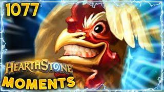 The Attack Of The GIANT CHICKEN!!! | Hearthstone Daily Moments Ep.1077