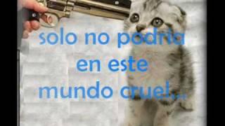 Me estaba acordando - Puerto Seguro (lyrics)