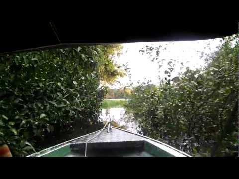 Passeio no Rio Negro , Floresta Amazonica 2011