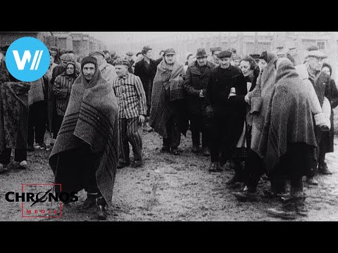 The Liberation of Auschwitz (including 1945 Red Army footage)