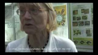 Titanenwurz blüht im Botanischen Garten Berlin