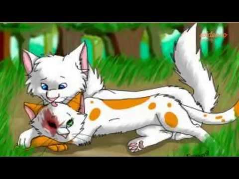 Warrior cat Zoey! - YouTube