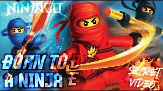 "LEGO NINJAGO Sneak Peek The Fold ""Born To Be A Ninja"""