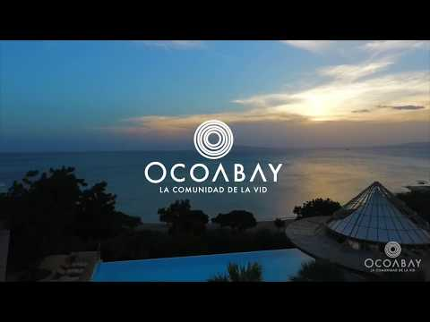 Ocoabay - The Community of Wine - An Investor / Partners Proposal