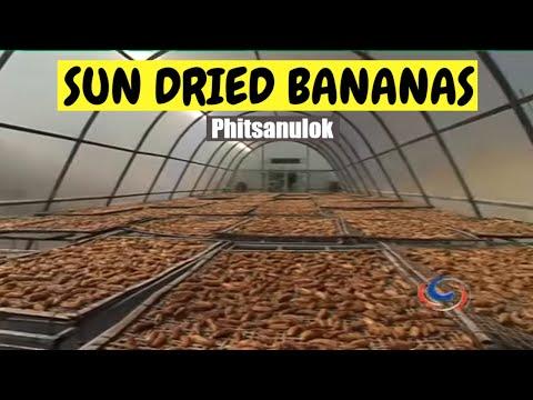 Сушеные бананы – изысканное и полезное лакомство