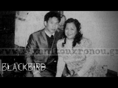 4 εγκλήματα αναζητούν δολοφόνο - Blackbird