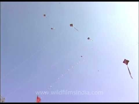 Kites galore at the Kite Festival in New Delhi, India