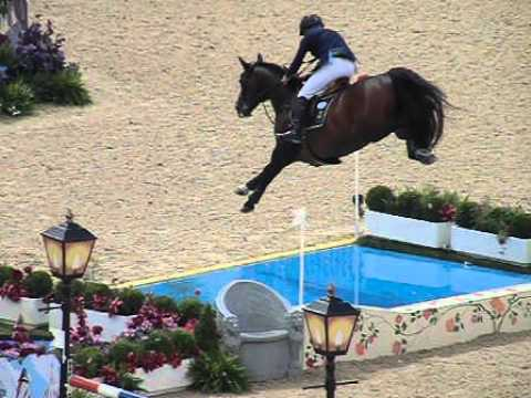 Image result for showjumping open water