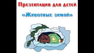 """""""Животные зимой"""", презентация для детей"""