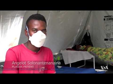 WHO Sends Experts to Prevent Spread of Plague Beyond Madagascar