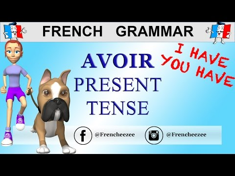 LEARN FRENCH VERB AVOIR (To Have) - Avoir Conjugation Present Tense