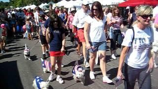 Westie Parade In Wayzata, Mn Sept. 11, 2011