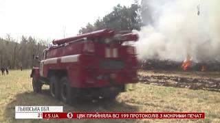 Масштабна пожежа у лісі: за такою легендою провели навчання на Львівщині - як це було