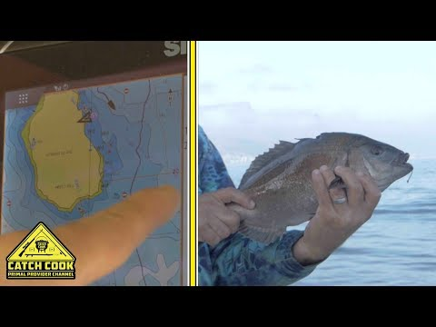 Fishing Off Robben Island | Snoek And Bream [CATCH COOK] Cape Town, South Africa