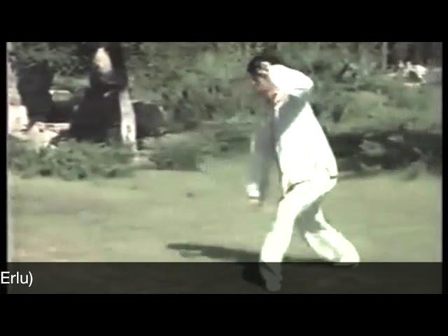 Chen Zheng Lei- Tai Chi style Chen Laojia Erlu Paochui (1986) [陈氏太极拳老架 Taijiquan style Chen]