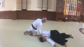 Suwari Waza Shomenuchi İriminage (İrimi-Tenkan)