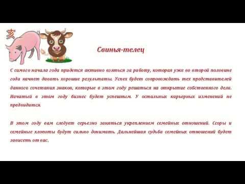 Скорпион Свинья — мужчина и женщина, гороскоп и