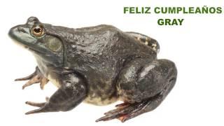 Gray  Animals & Animales - Happy Birthday
