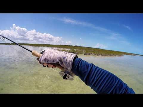 Andros Island, The Bahamas  May 2016