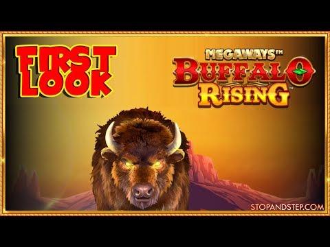 BOXING DAY GAMBLES ? Buffalo Rising MEGAWAYS Slot & Dragon Bet Roulette ! - 동영상