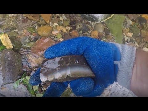 Magnet Fishing: City Railroad Creek