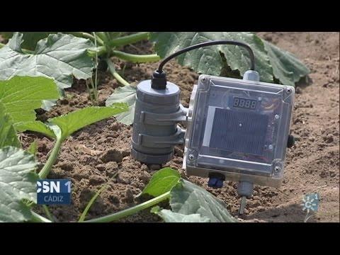 Sistema de riego inteligente para explotaciones agrícolas
