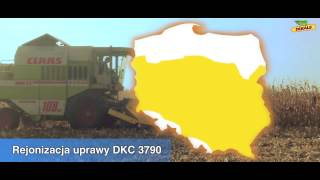 Video Kukurydza DKC 3790_żniwa download MP3, 3GP, MP4, WEBM, AVI, FLV November 2017