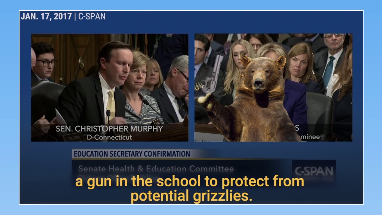 Image result for devos grizzly bear