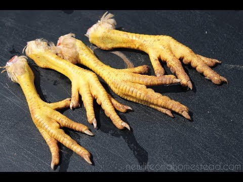 The Surprising Health Benefits Of Eating Chicken Feet Youtube