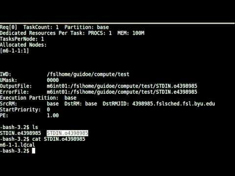 Submitting Jobs Using qsub