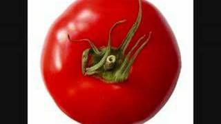 dj jan - tomatenplukkers