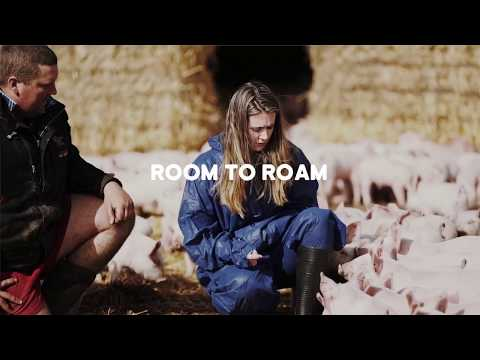 RSPCA Approved Good Food Series: Room to roam