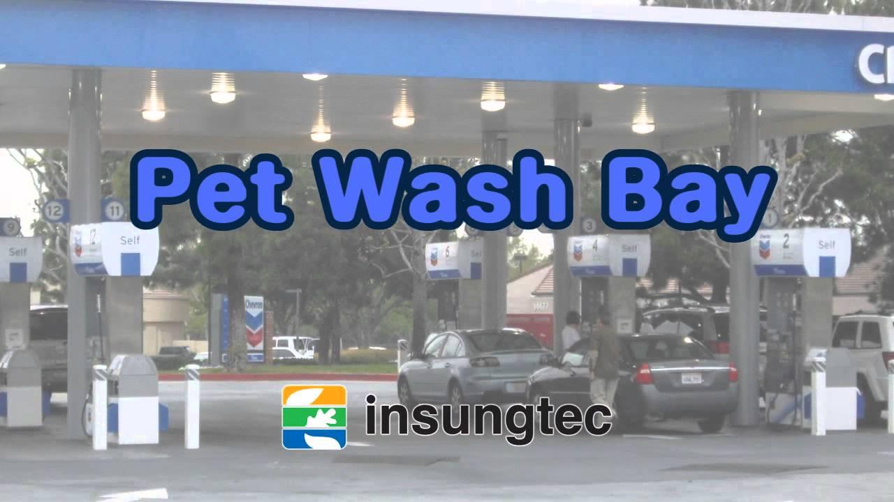 Introduction of insungtecs self serve dog wash youtube introduction of insungtecs self serve dog wash solutioingenieria Choice Image