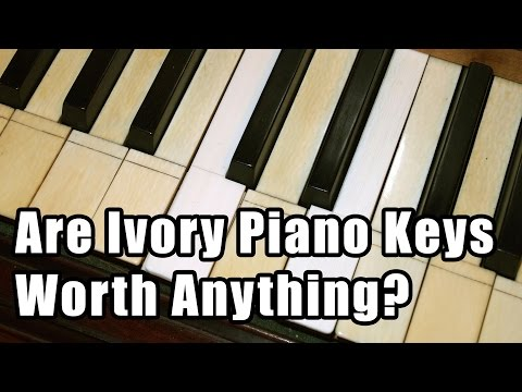 Are Ivory Piano Keys Worth Anything?