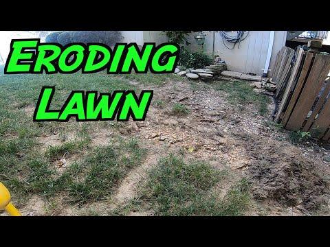 Repairing an UGLY Lawn   Small Lawn Renovation   Battling Soil Erosion