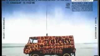 Tricky - Ponderosa - Maxinquaye(1995)