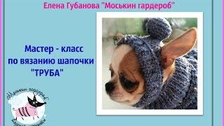 Мастер   класс вяжем шапочку собаке