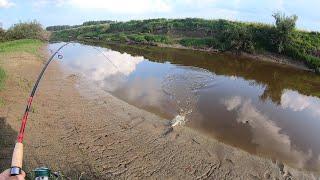 Рыбалка Зубатая В Секретных Местах Пересохшая Река