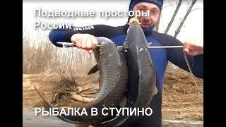 Рыбалка в Ступино День II Подводные просторы России